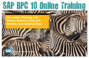 SAP NW BPC 10.0 Training Online