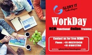 Workday HCM Functional Training Free Demo on 16/05/2016 at 6.30 A